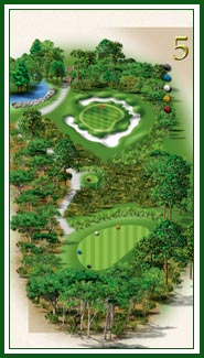 Creek hole 5